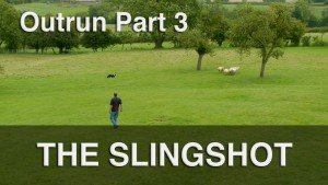 The slingshot is our own technique for putting distance between a herding dog and the stock